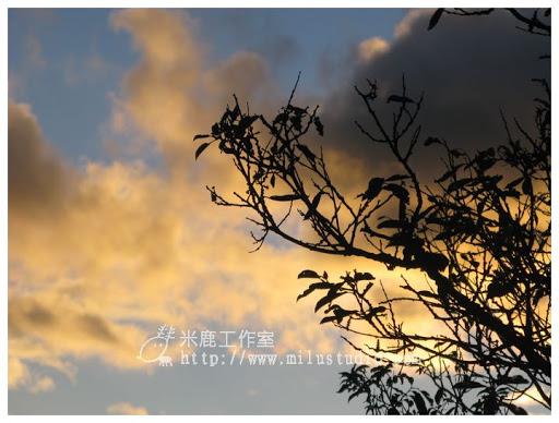 20101118life01-25.jpg