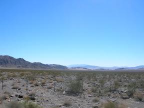 042 - Desierto entre California y Nevada.JPG