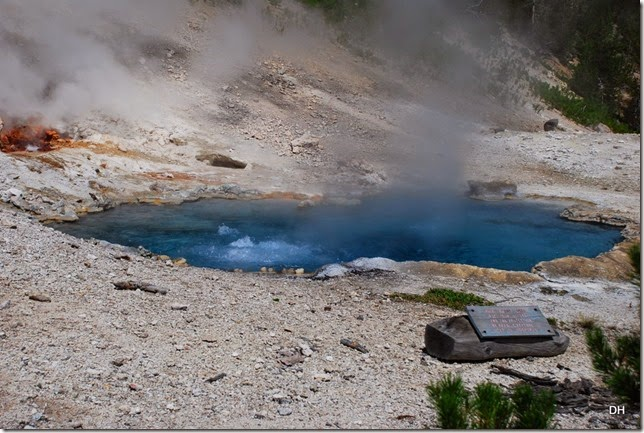 08-11-14 A Yellowstone National Park (361)