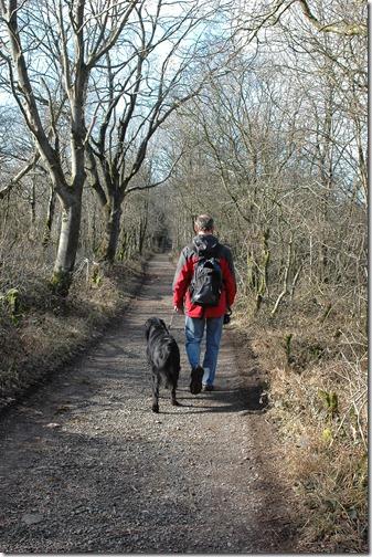 12.02.19dog walk 011