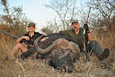 Dirk & Rich Buffalo Hunt 2014