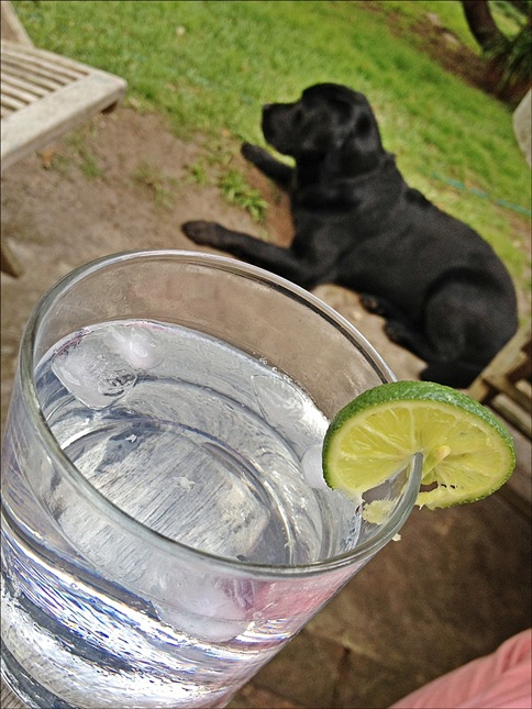 Day 9 - Guilty Pleasure