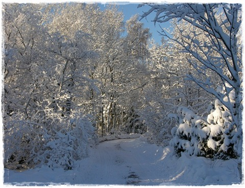 2 snö