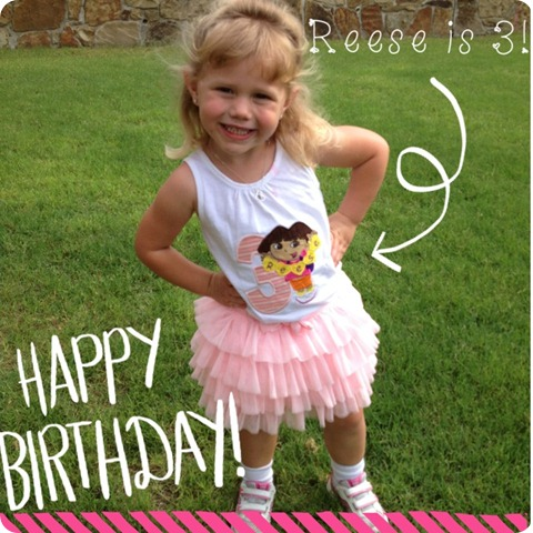 The Johanson Journey- Reese is 3!