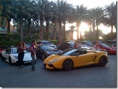 Dubai-20130222-00203
