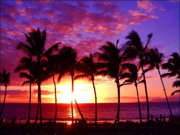 هاواي3