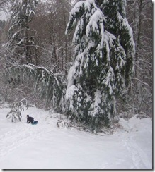 snowstorm1201_39