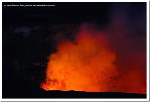 140724_HawaiiVolcanoesNP_0270