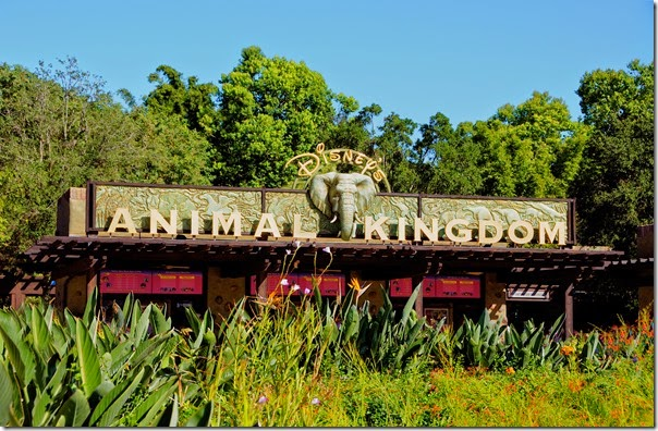 Animal Kingdom - main gate