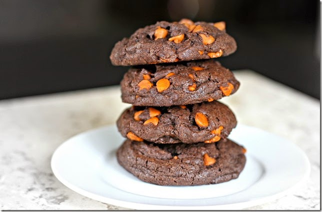 Chocolate Cookie-Butter Cinnamon Chip Cookies2