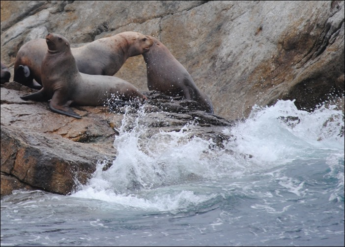 2013_08_Alaska 684