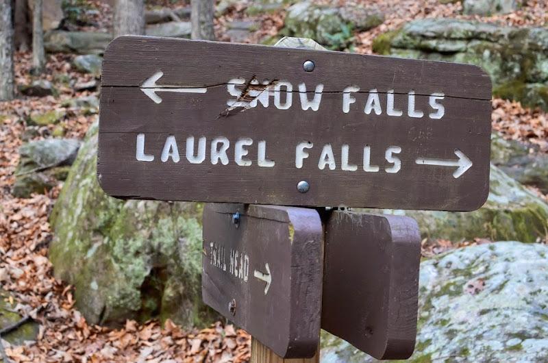 Laurel Snow area visit-17893