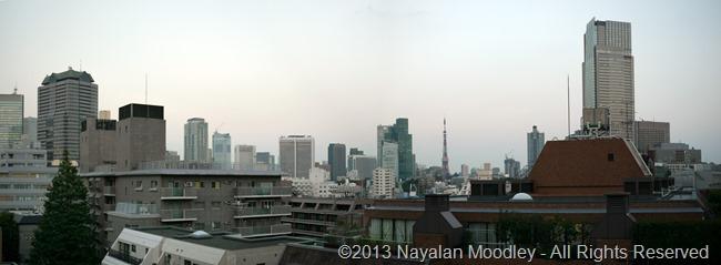 tokyo panorama 1