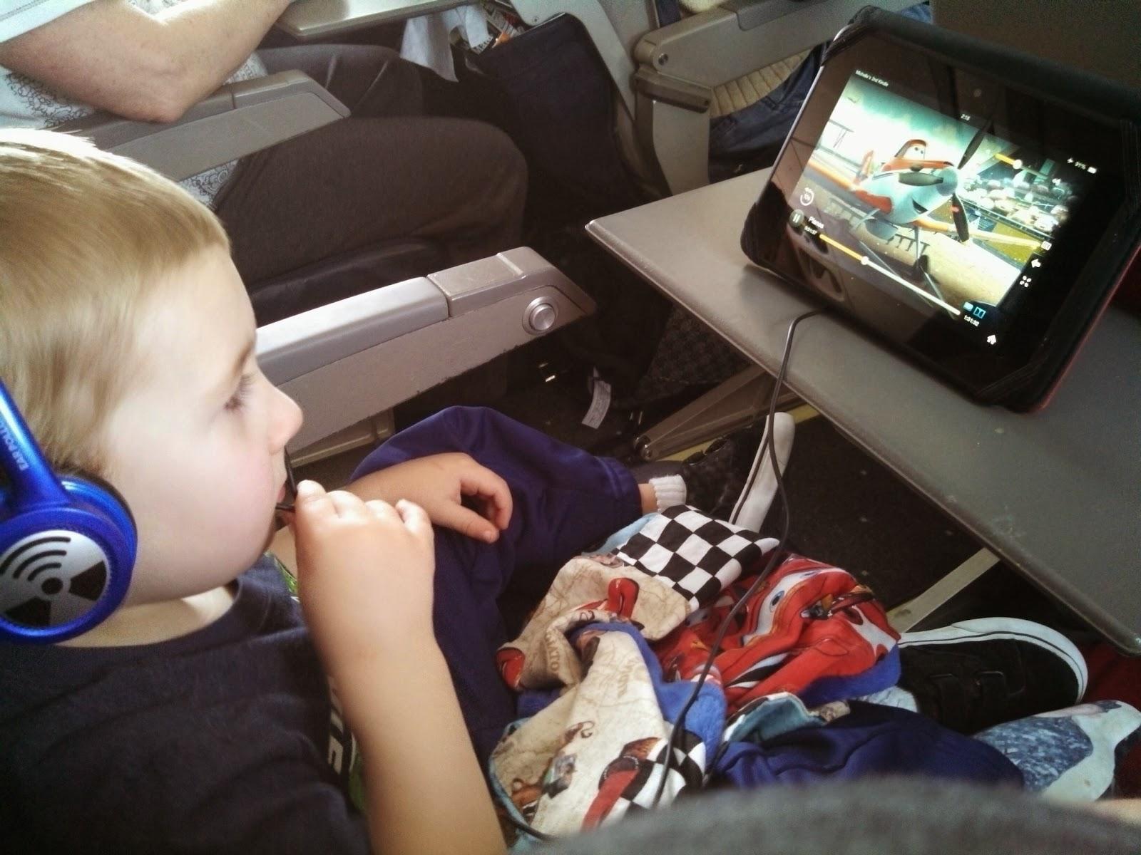 Wheaton Pavlik Harness Car Seat