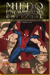 Miedo Spiderman
