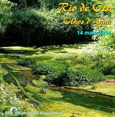 Rio Ota - Olhos d'Agua 14.05.14