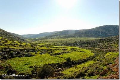 Judean hills near Debir, Khirbet Rabud, tb030407777