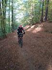 Trójmiejski Park Krajobrazowy. Z Oliwy jedziemy zielonym w kierunku Niedźwiednika, a później niebieskim do samego Sopotu.