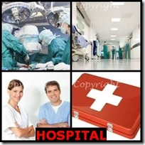 HOSPITAL- 4 Pics 1 Word Answers 3 Letters
