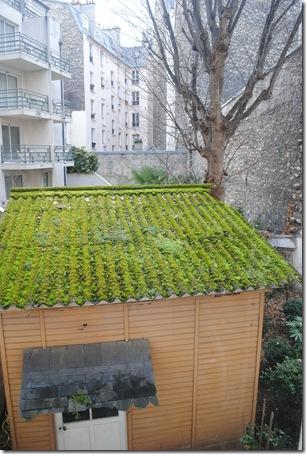 Paris January 2013 (4)