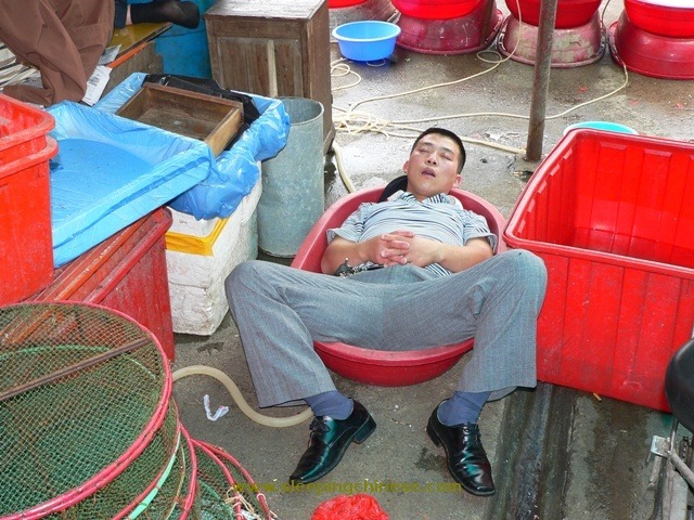 sleeping-chinese-6