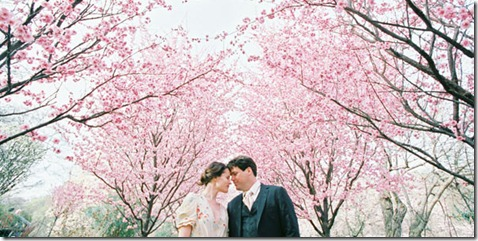 cherry-blossoms-spring-film-wedding2
