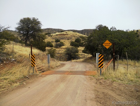 12. cattle guard-kab