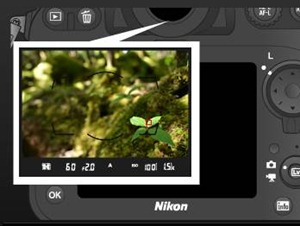 Copyright Nikon - Click to visit Nikon USA for more info
