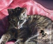 wildlife art cat