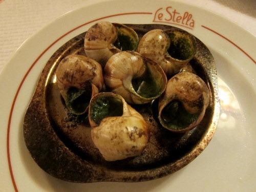 Gros escargots sauvages de Bourgogne