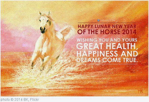 'Lunar New Year of Horse 2014' photo (c) 2014, BK - license: http://creativecommons.org/licenses/by-sa/2.0/