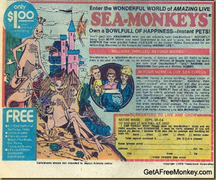 sea_monkeys1 - Copy