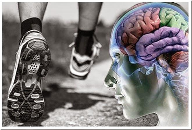 cérebro e exercícios