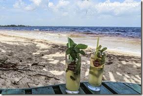 Mojitos em Playa Larga, Cuba
