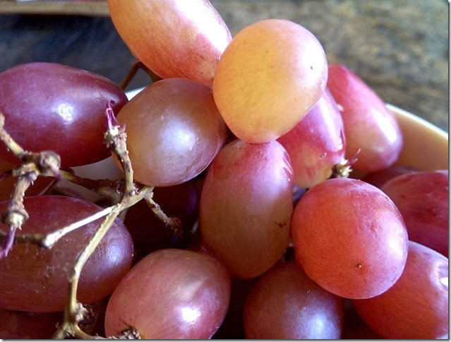 grapes-public-domain-pictures-1 (2243)