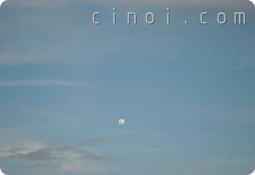 Bulan di siang hari
