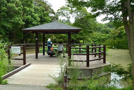 Glória Ishizaka -   Kyoto Botanical Garden 2012 - 33