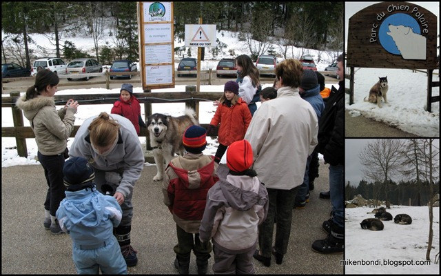 20070302 - 4 Parc du Chien Polaire