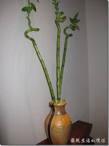 惠州-康帝國際酒店。客房一進門的地方擺了一盆幸運竹,可惜這竹子似乎照顧的並不太好,花瓶倒是蠻漂亮的。