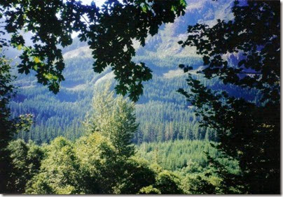 View from the Iron Goat Trail near Milepost 1718 in 2000