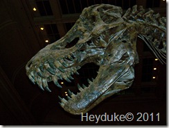 10-05-2011 Washington DC 038