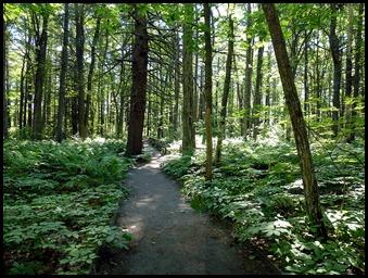 02e2 - Rachel Carson Nature Trail