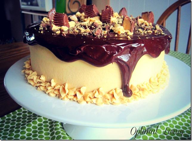 Peanut Butter Cake 55
