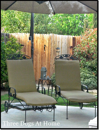 curtain and patio 090