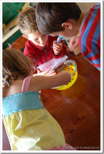 Our Aussie Homeschool ~ Edible Cell Model