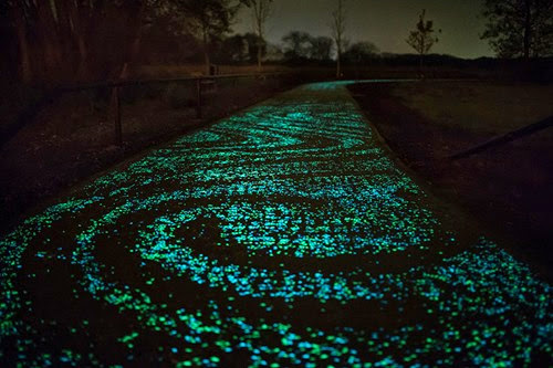van-gogh-starry-night-glowing-bike-path-daan-roosengaarde-7