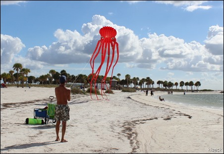 Fred Howard Park beach octopus kite