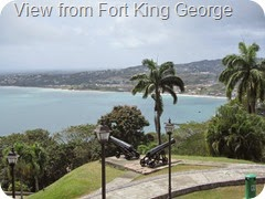 025 View from Fort King George