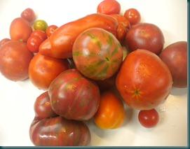 Mary Valeriano pomodori