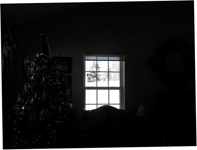 Snow, Winter Wonderland (38)